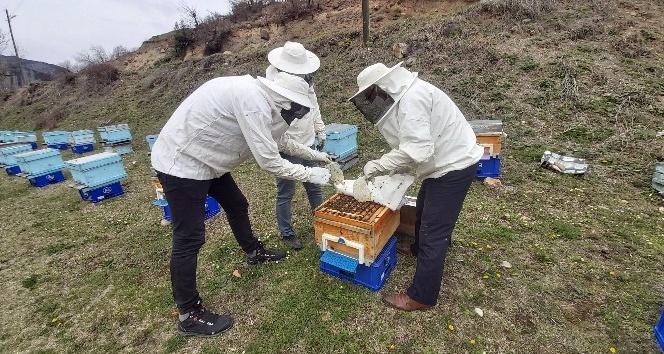 Arılara, Vefa Grubu tarafından bakım ve ilaçlama yapıldı