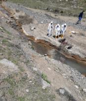 Erzincan'da erkek cesedi bulundu