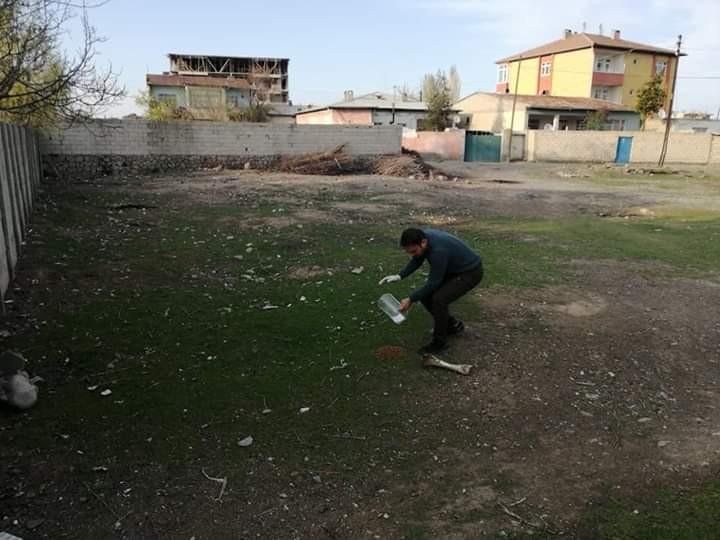 Iğdır'da sokak hayvanları için yem ve su bırakıldı
