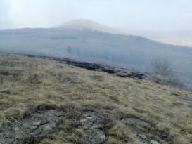 Ardahan'da çıkan orman yangını kontrol altına alındı