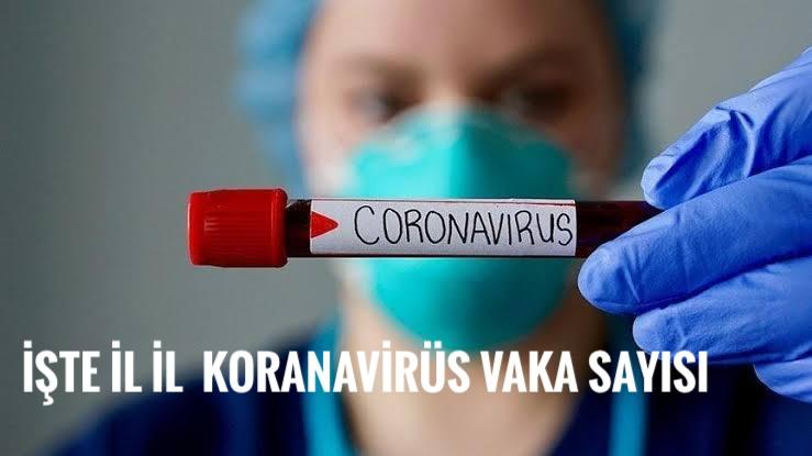 Iğdır'da kaç pozitif Koranavirüs vakası var,işte cevabı
