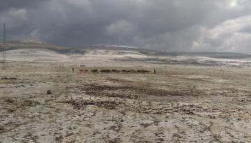 Ardahan'da dolu ekili alanlara zarar verdi