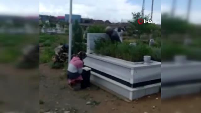 Sokağa çıkma kısıtlamasında Iğdır daki şehit oğullarının mezarını Kaymakamın yardımı ile ziyaret…