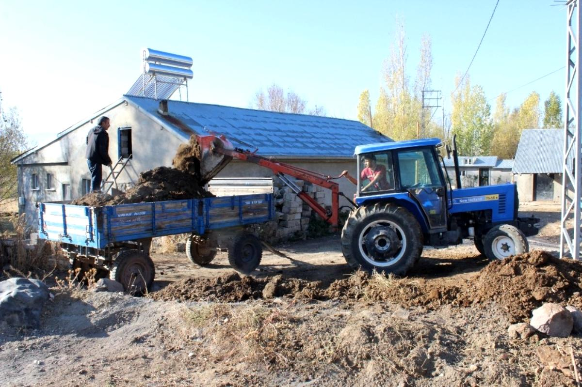Ağrılı çiftçiler topraktan verim almak için hayvan gübresi kullanıyor