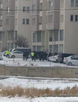 Tuzluca'da iki grup arasında silahlı çatışma
