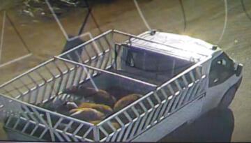 Iğdır'da hayvan hırsızlığı 1 kişi tutuklandı